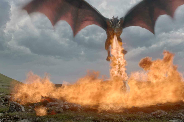 Real Fire Dragon: The Biology Behind A Fire-breathing Dragon