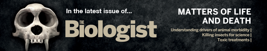 Carousel 3: The latest issue of the biologist