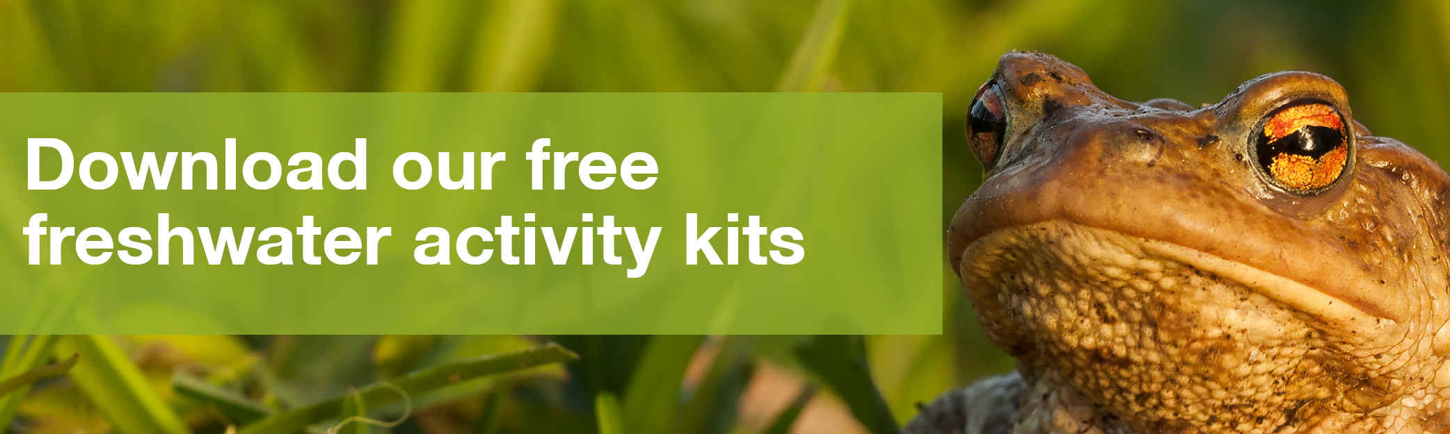 Download activity kits
