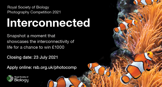 RSB Photography Competition 2021 social media card