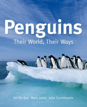 Pengiuns thier world their way