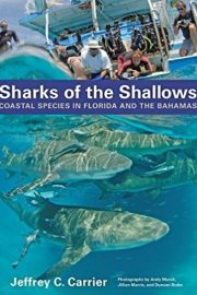 SharksoftheShallows
