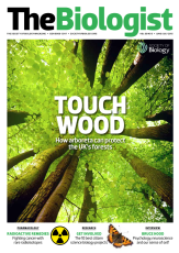 Magazine 2013_06_01_Vol60_No3_Touch_Wood