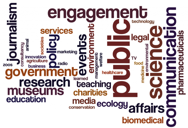 careers wordle