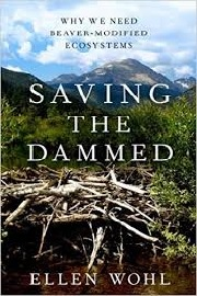 saving the dammed
